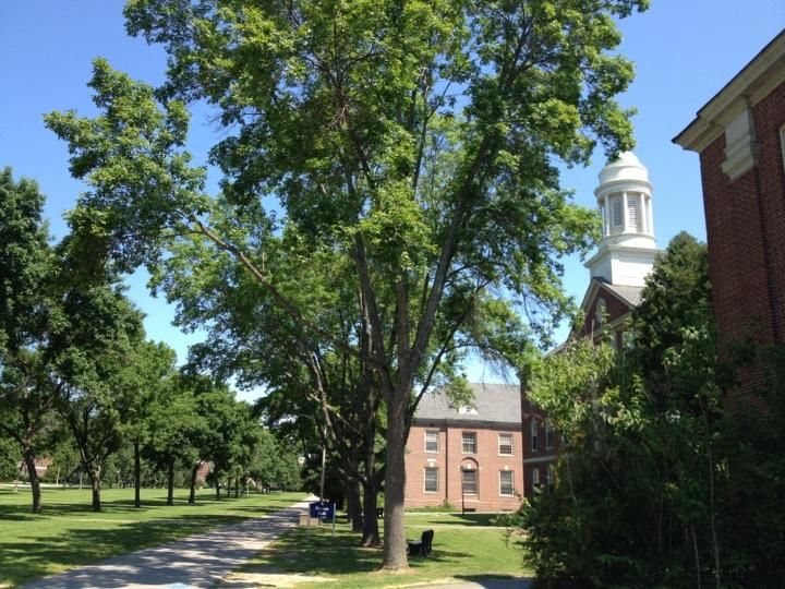 15 Best University Of Maine Images On Pinterest Colleges
