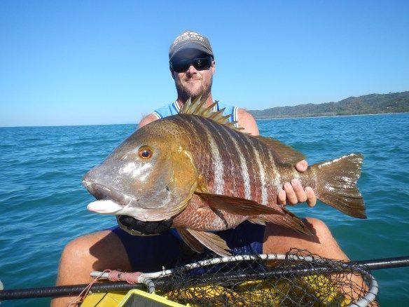 1095 best images on pinterest river for Big sur fishing