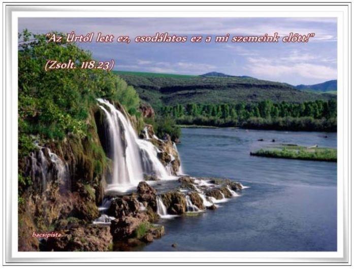 """""""Az Úrtól lett ez, csodálatos ez a mi szemeink előtt!"""" (Zsolt. 118:23,)"""