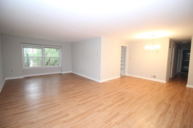 349 Homeland Southway Unit 3a Baltimore Md 21212 Condo For Rent In Baltimore Md Apartments Com Condos For Rent Hardwood Floors Condo