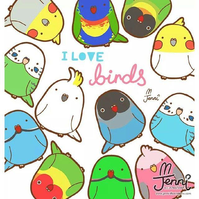 """J E N N I on Instagram: """"Birds birds birdssssss #birds #bird #birdlovers #budgies #indianringneck #lovebirds #galah #lorikeet #cockatiel #cockatoo #drawing…"""""""