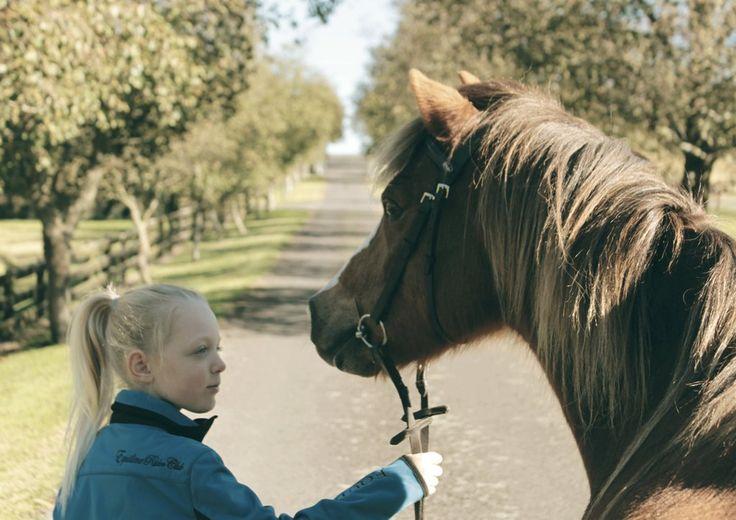 Equine Trader Vetpro Photo of the Week entrant - Amy Barrack