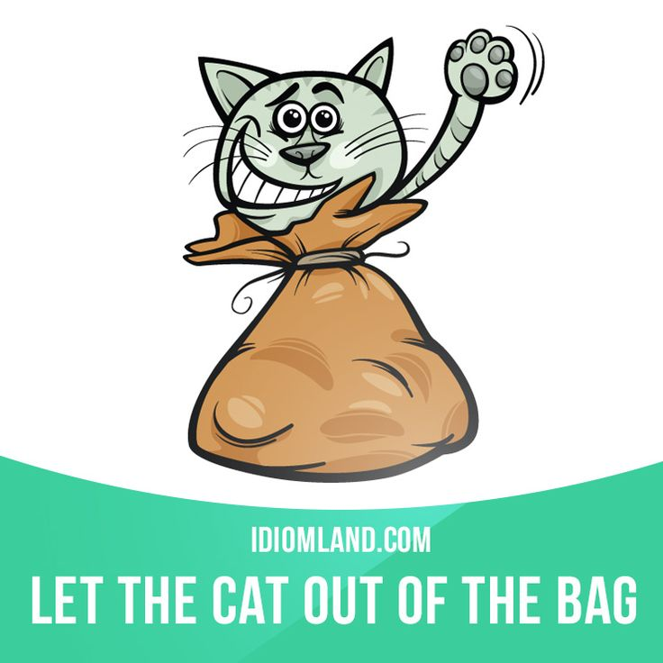 """Let the cat out of the bag"" means ""to reveal a secret or a surprise by accident"". Example: It's a secret. Try not to let the cat out of the bag."