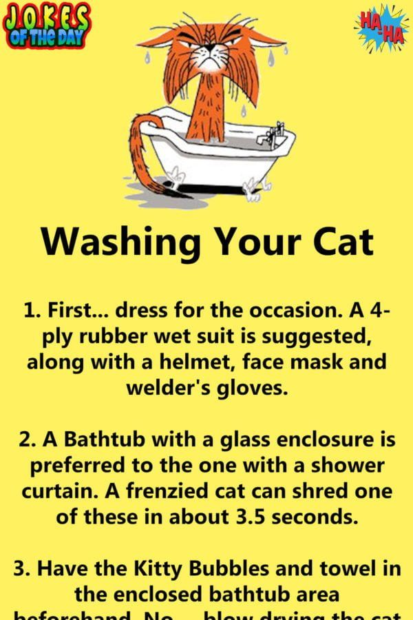 Humor How To Wash A Cat Clean Funny Jokes Funny Long Jokes Funny Times