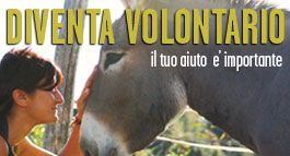 Ippoasi Onlus - rifugio per animali 5xmille e Volontariato woofing PISA