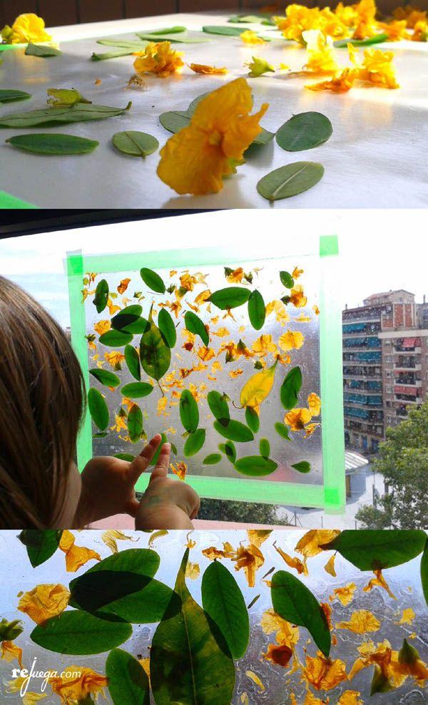 educar la mirada de los niños jugando con flores