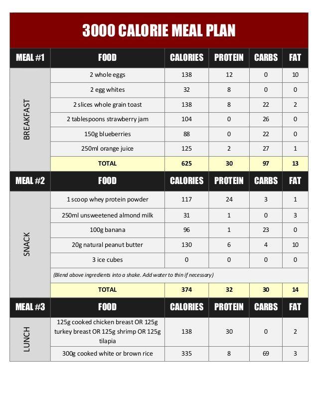 300g protein diet plan