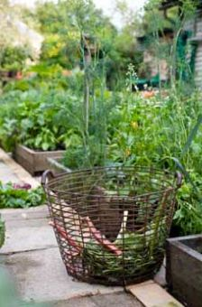 : The Vegetable Garden, Groententuin Gardens, Edible Gardens, Kitchens Gardens Herbs, Pretty Basket, Landscape Gardens, Dreams Gardenstyl, Gardens Vingett, Vegetable Gardening
