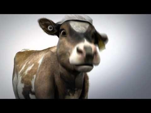 Rosie's World - About Milk
