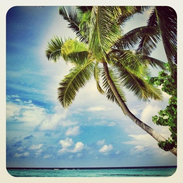 Fihalhohi Island Resort Maldives 2011