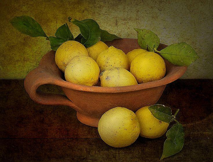 Lemons by Lorenzo Gizzi, via 500px