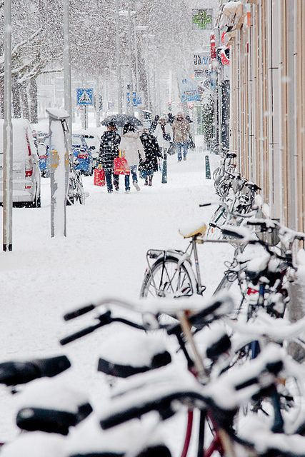 chilly-winters:  Snowstorm in Rotterdam by evgeny drokov on Flickr.