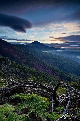 Highest peak in Spain: El Teide. Tenerife (Canary Islands)