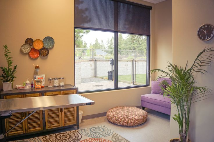 BROOKSWOOD ANIMAL HOSPITAL Small animal veterinary clinic ARCHITECTURE AND INTERIOR DESIGN