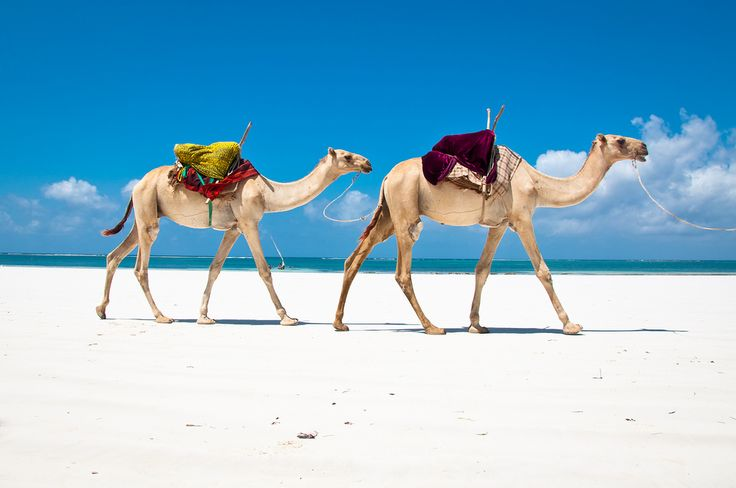 Paradise Found | 20 Africa's Best Beaches ♡★queen T is Me ★♡