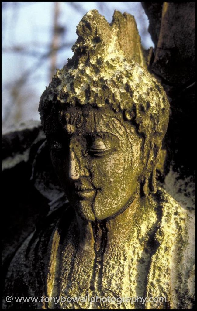 Detail of Plaster Buddha figure left to decay in the fields of Norfolk in around 1988. The Buddha was sculpted by Aloka. Taken as a Kodachrome slide.