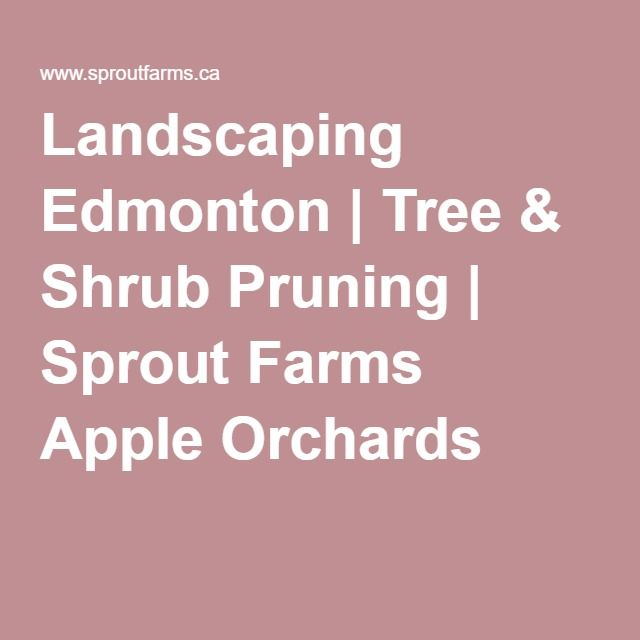 Landscaping Edmonton | Tree & Shrub Pruning | Sprout Farms Apple Orchards