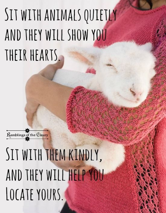 Kindness to animals grows your ability to love.