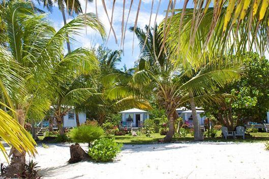 Seascape Inn, Mangrove Cay, Andros, Bahamas. $175/night for superior cottage, http://www.seascapeinn.com/home.html