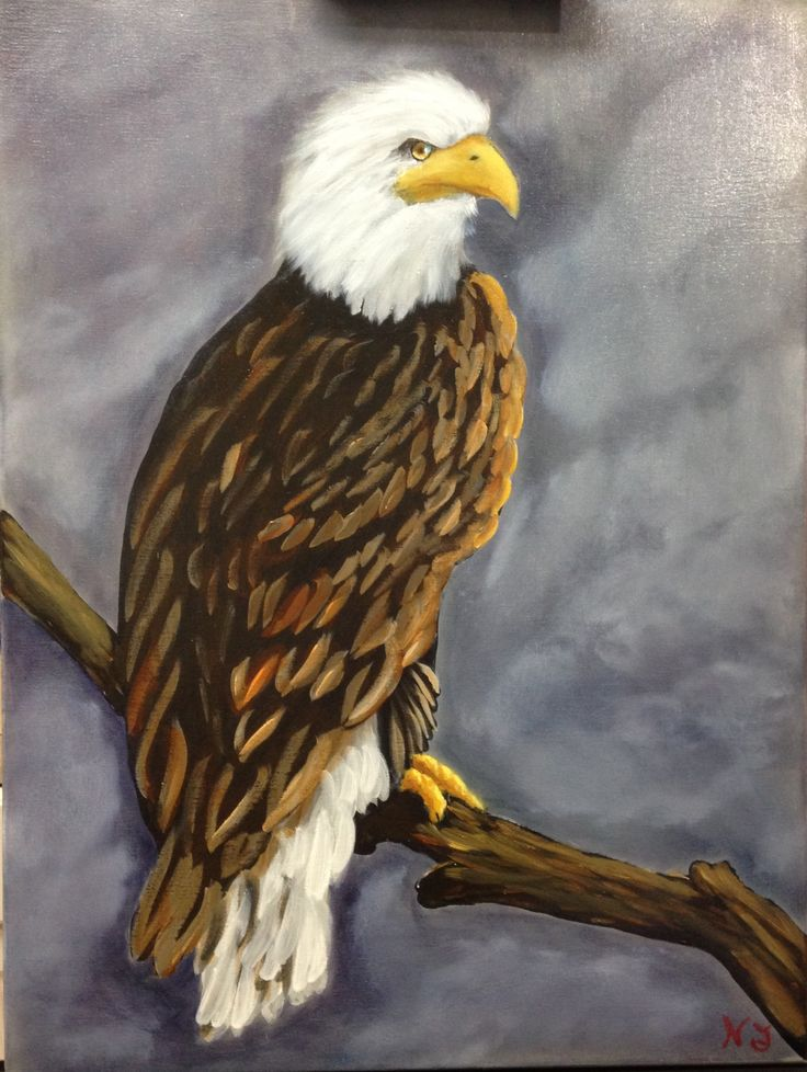 Majestic Eagle Oil And Acrylic On Canvas My Paintings