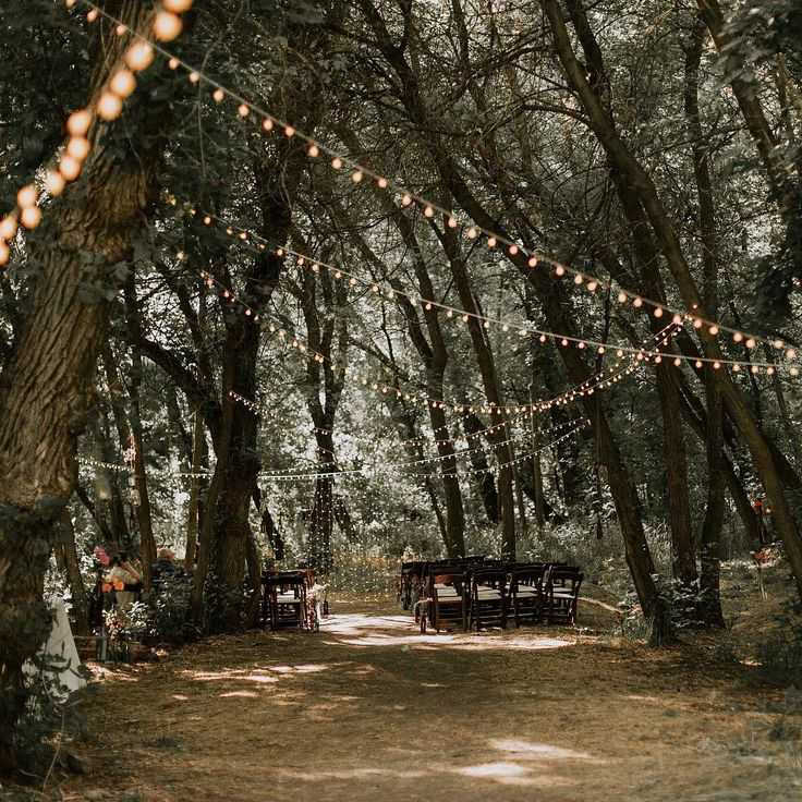 The 25 Best Wedding In Woods Ideas On Pinterest Forest And Reception