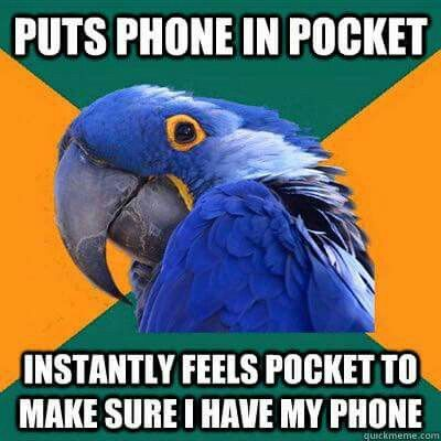 Anxiety parrot