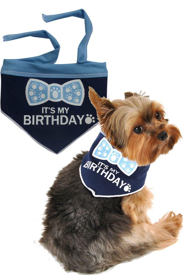 It's My Birthday (Boy) Bandana Scarf in color Blue/White
