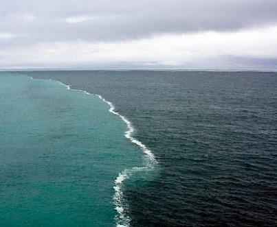 2 oceans meet and do not mix robitussin
