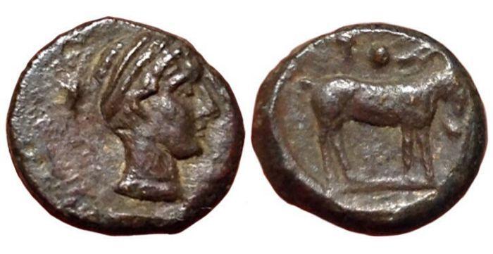 Griekse oudheid - Sicilië Nakona laat de 5e eeuw V.Chr. - Æ Onkia (brons 11mm 1 63 g.)-hoofd van de nimf / geit - CNS 2; SNG ANS-; HGC 2 957  De Griekse oudheidSicilië Nakona late 5e eeuw v.Chr.Æ Onkia (brons 11mm 1 63g.)Voorzijde hoofd van nimf recht het dragen van de ketting en met haar gebonden met filet.Omgekeerde geit permanent gelijk te hebben; pellet (mark van waarde) boven klimop blad naar links.Functies Æ brons diameter 13mm gewicht 2 00g.Munt NakonaZeer fijn rang bruine…