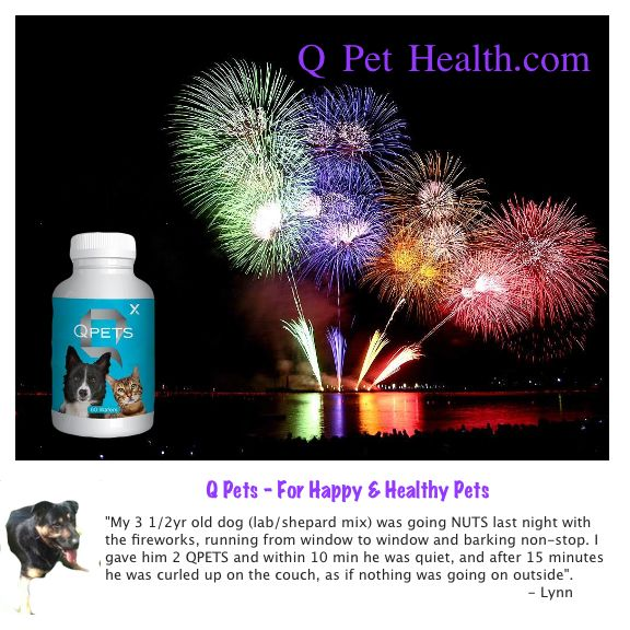 Is your #pet afraid of loud noises? Suffer from #anxiety? Pet owners are loving #Qpets for how it helps to calm their pets. http://qpethealth.com