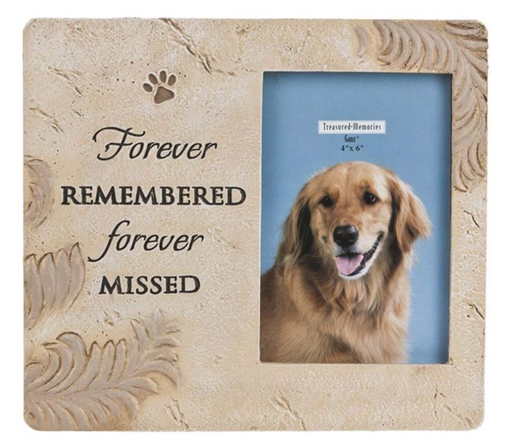 58 best pet memories images on Pinterest | Pet memorials, Dog ...