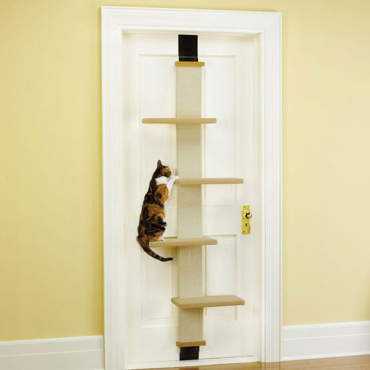Unless your cat likes going for frequent rides--put this on a door that doesn't get opened often...