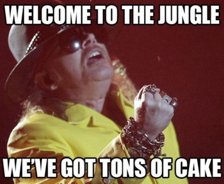 Picking on Axel Rose is just too easy.