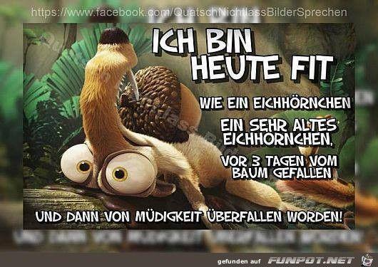 lustiges Bild 'Ich bin heute FIT.jpg'- Eine von 1388 Dateien in der Kategorie 'guten-Morgen-Bilder' auf FUNPOT.