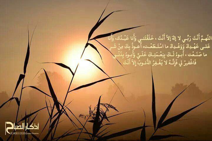 اللهم أنت ربي لا إله إلا أنت خلقتني وأنا عبدك وأنا على عهدك ووعدك ما استطعت أعوذ بك من شر ما صنعت أبوء لك بنعمتك علي وأبوء بذنبي فاغف