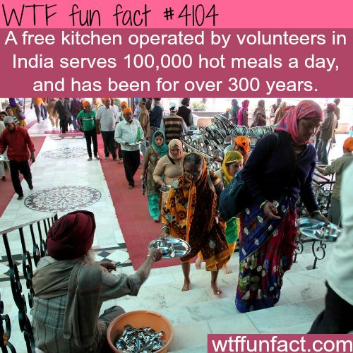 Free kitchen in India serves 100,000 meals a day - Faith In Humanity Restored!  - WTF Awesome facts