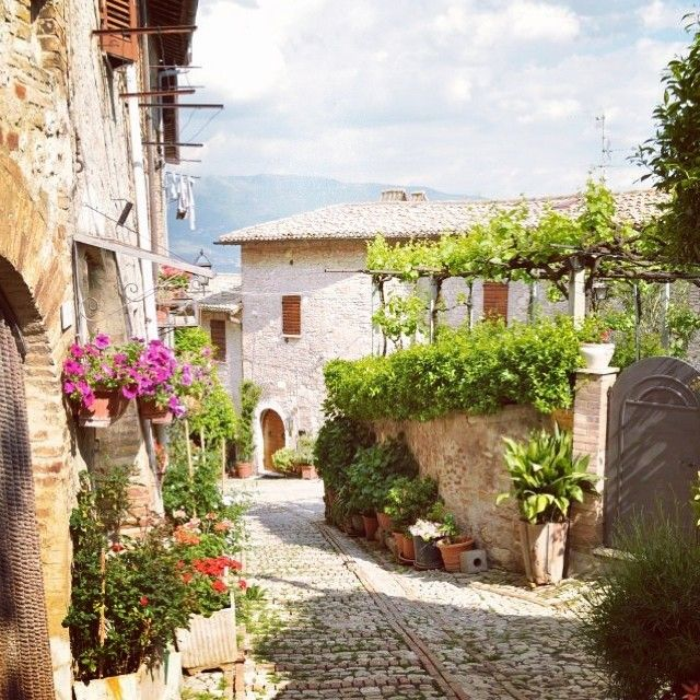 thebluechicory:  #beautiful #love #cute #warm #summer #sunnyday #family #tuscany #tuttomoltobello #trip #city #village #flowers #italy #holidays #plants #trees #witchy #cottage #stradinecolorate
