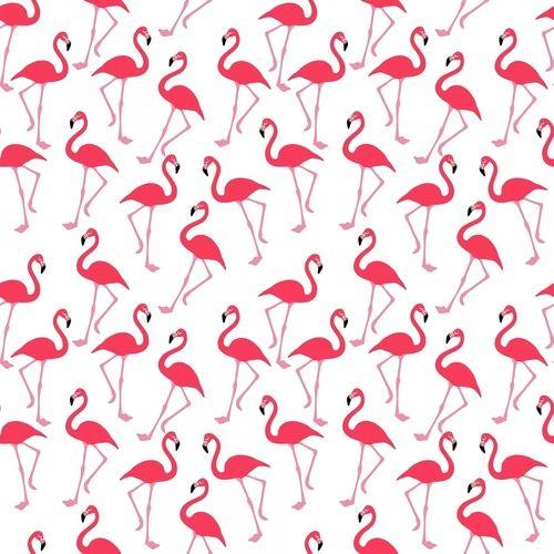 Te vi volando en flamencos rosados al círculo polar #hipster