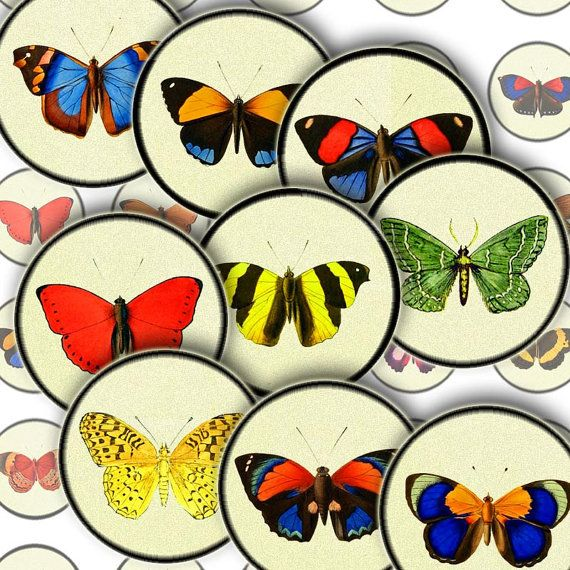 Vibrant Vintage Butterflies on Paper with Black Border, Digital Collage Sheet, 35 20mm/2cm circle images