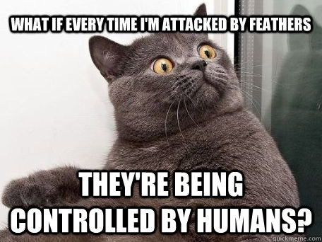 f6163b223c12df14d2374107b2682943 cats humor cat cat 13 best conspiracy cat images on pinterest funny animal, funny
