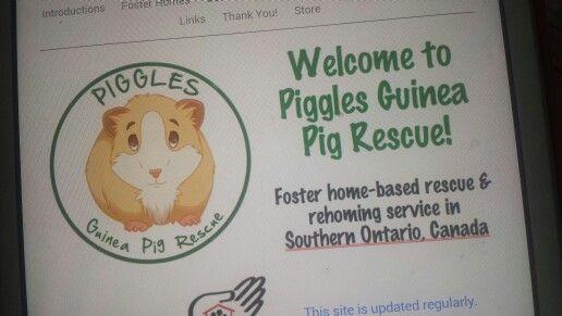 Piggles Rescue!!!