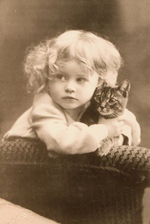 Vintage picture of a little girl with her kitten