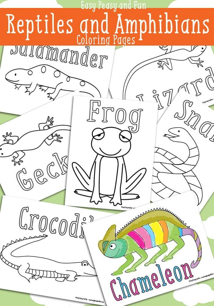 Reptile Coloring Pages Free Printable Easy Peasy And Fun Reptiles Preschool Amphibians Activities Coloring Pages