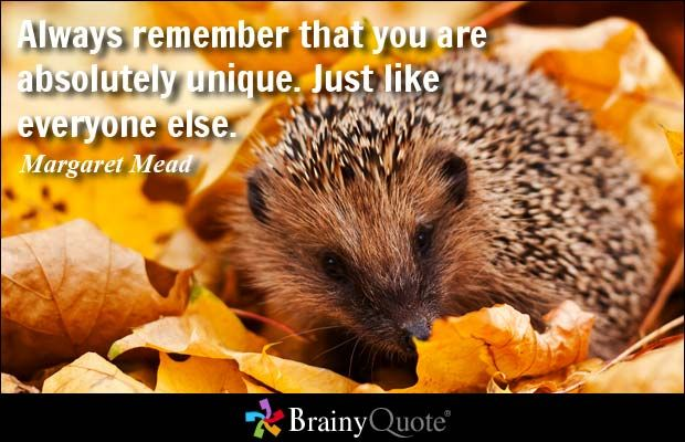 Always remember that you are absolutely unique. Just like everyone else. - Margaret Mead at BrainyQuote Mobile