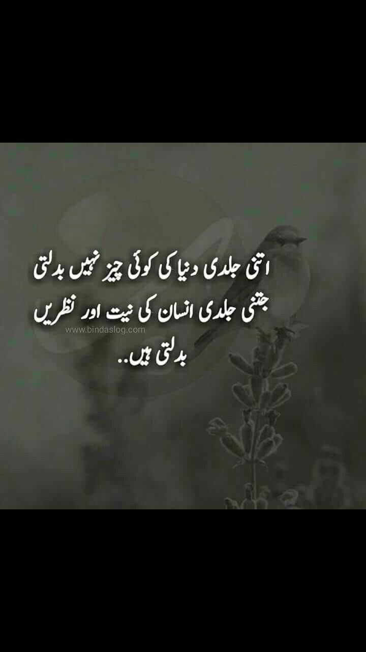 Pin By Sumaiya On Urdu Quotes True Words Words Deep Thoughts