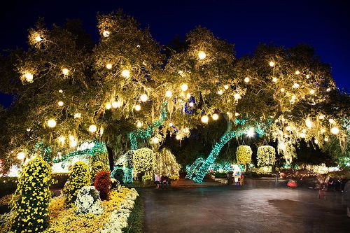 Bellingrath Gardens Mobile Alabama | Beautiful Mobile