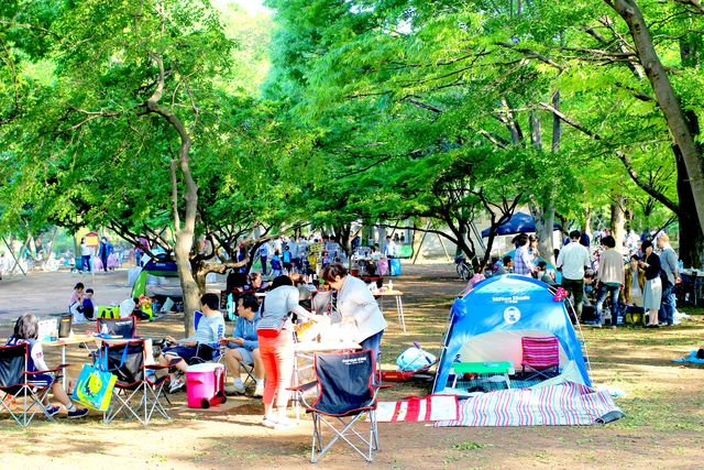 【東京】手ぶらで行けちゃう!バーベキューに凧揚げ、そりが楽める小金井公園