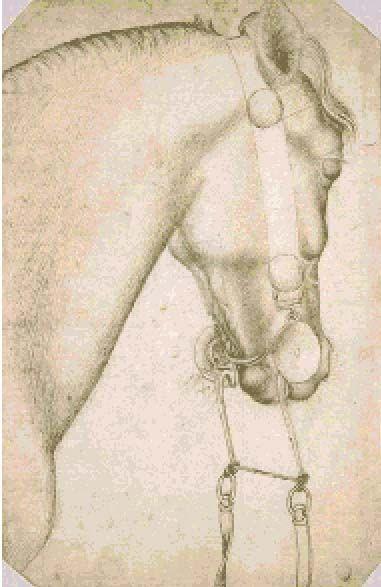 Leonardo da Vinci, horse studies.