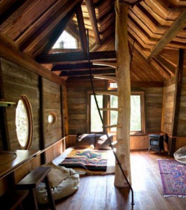 Photo : A l'intérieur de la cabane dans les arbres