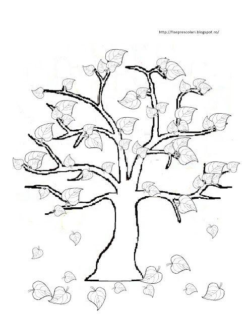 Copaci De Colorat Pentru Copii Fise De Lucru Gradinita